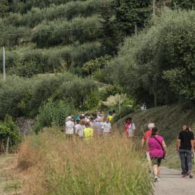 camminata-tra-gli-ulivi-16_016