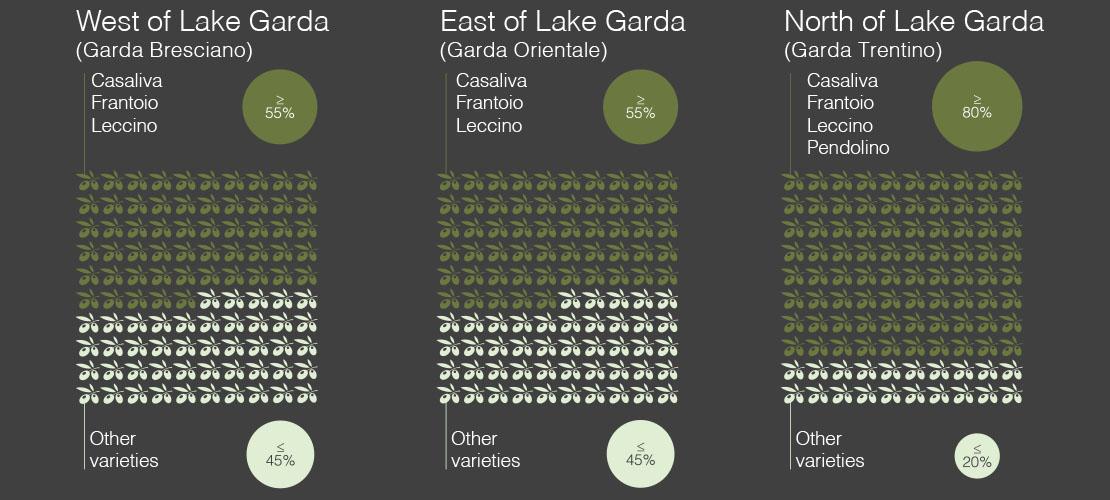 garda dop olive oil varieties