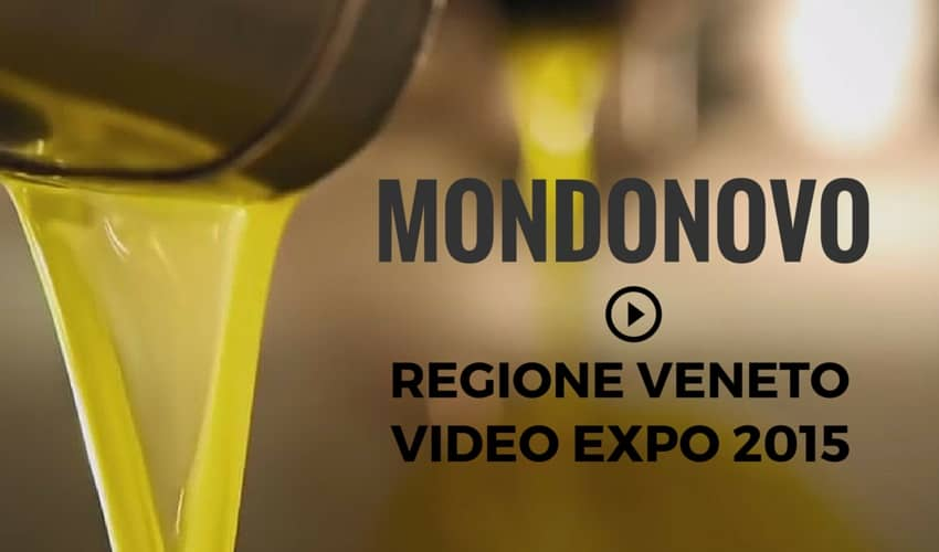 video visit veneto expo