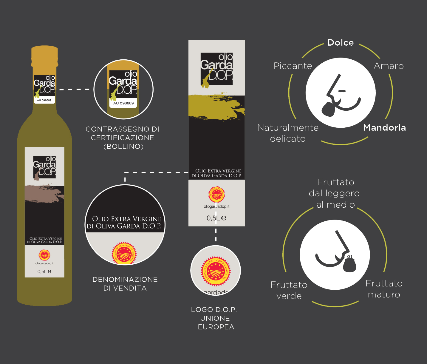 infografica-olio-2